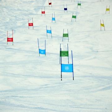 Organizacja zawodów narciarskich - st