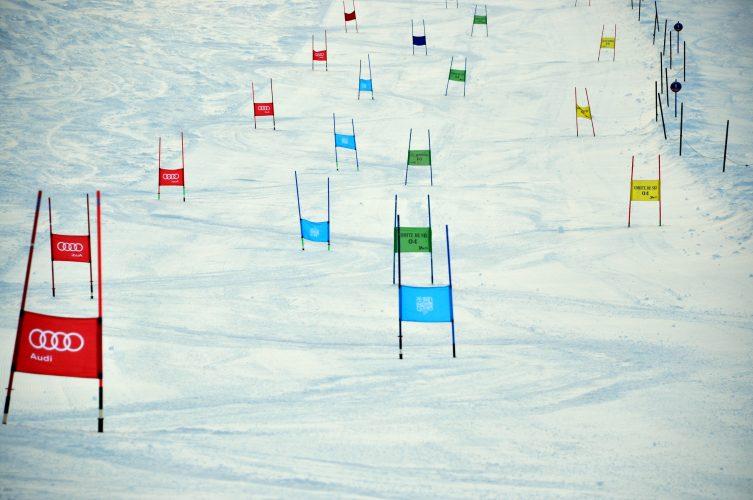 Organizacja zawodów narciarskich - m